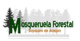 MOSQUERUELA RENOVABLES, S.L.
